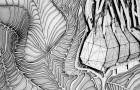 LABLAX 2014: Texturas y anomalías urbanas