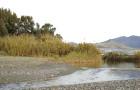 La involución del espacio natural en la Costa del Sol Occidental: parques fluviales activos como actuación regeneradora