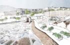 Paisaje Patrimonial: Estudio y propuesta sobre el Cementerio Muyahidín de Tetuán