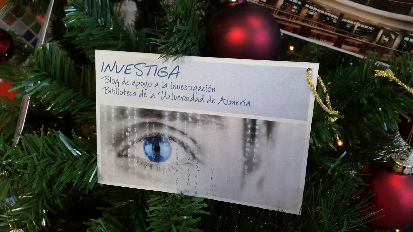 navidadinvestiga