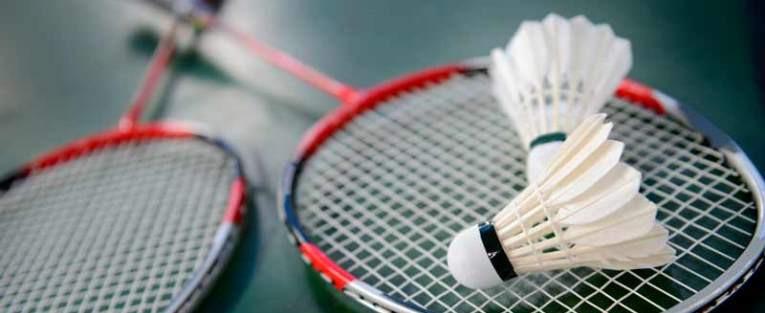 Monitor Territorial de Badminton